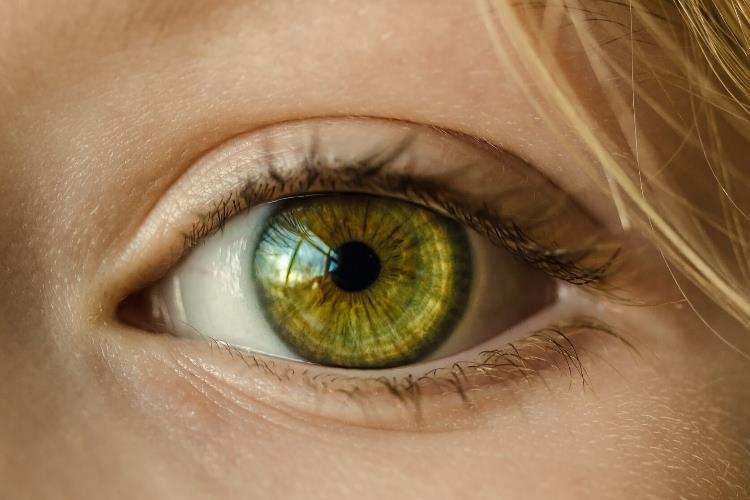Augencreme - sinnvoll oder sinnlos?